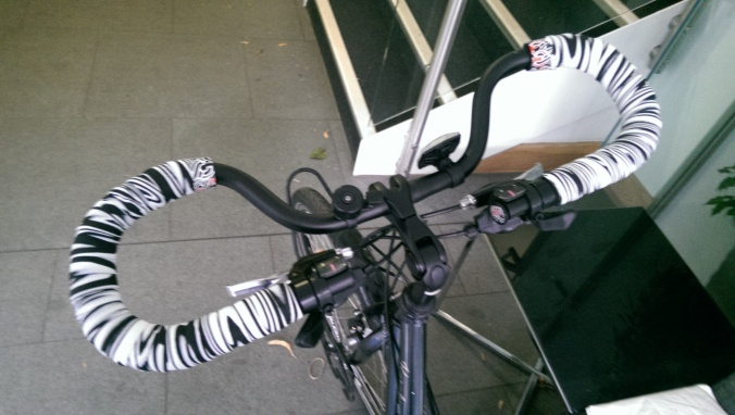 Part bike, part Pegasus, part Zebra!