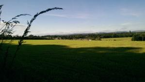 Sunny Scotland! Amazing